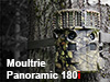 Review: Moultrie's New Panoramic 180i Trail Camera