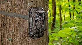 Review: Moultrie's new X6000 Cell Camera