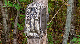 Review: Moultrie's XV7000i Cellular Trail Camera