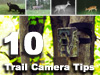 10 Game Camera Tips