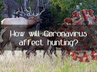 How will the Coronavirus affect Hunting?