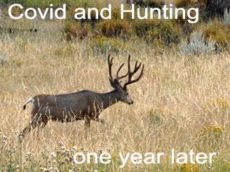 Coronavirus and Hunting - one year later