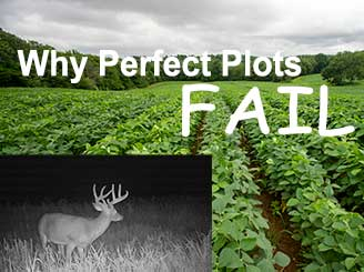 Why did this food plot FAIL?