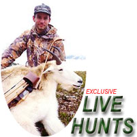 Bowhunting Mountain Goat in British Columbia - a Semi-LIVE Bowhunt from Bowsite.com
