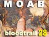 Interactive Bloodtrail Challenge 28