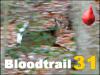 Interactive Bloodtrail Challenge 31
