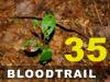 Bloodtrail Challenge 35