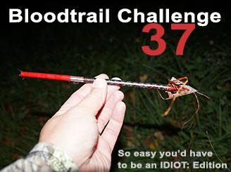 Bloodtrail Challenge 37