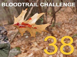 Bloodtrail Challenge 38