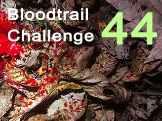 Bloodtrail Challenge 44 - lousy shot edition