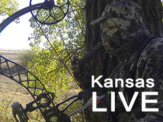 Live bowhunt from Kansas