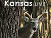 Kansas Whitetails Live